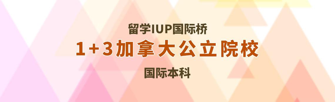 山大留学IUP国际桥1+3加拿大公立名校国际本科