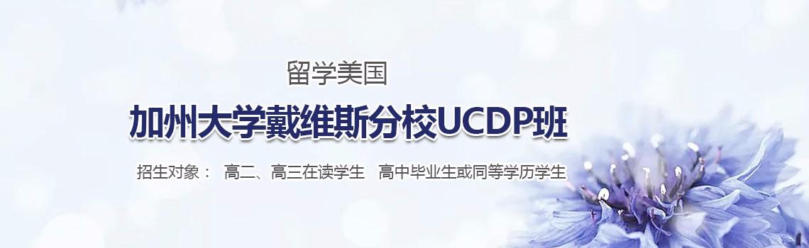 贸大留学美国加州大学戴维斯分校UCDP定向班
