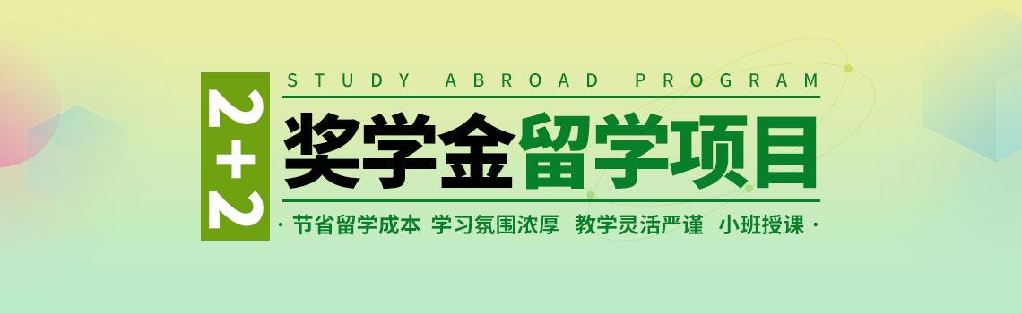 中财IEB国际本科教育项目2-2~3奖学金专项班